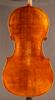 Princeton Violins Virtuoso Outfit