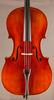Snow 200 Cello