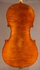 Princeton Violins Prodigy Cello