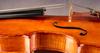 Viola by Jamie Marie Lazzara. Florence, 1999: Side.