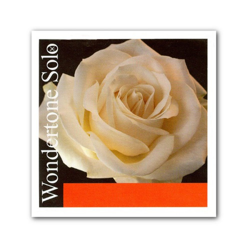 Wondertone Solo Violin Strings Set - 4/4