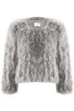 Ostrich Feather Jacket - 8 Colours