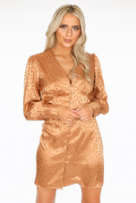 Leopard Embossed Satin Mini Dress