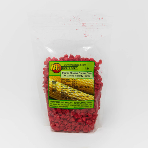 Silver Queen Sweet Corn (Out of Stock)