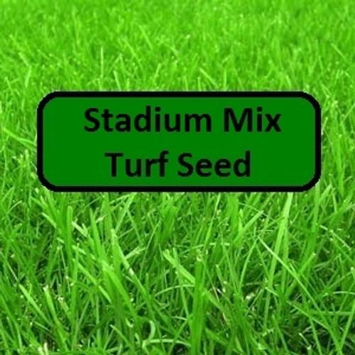 Stadium Mix Turf Seed
