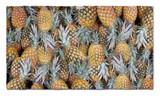 Leus Pineapple Paradise Towel
