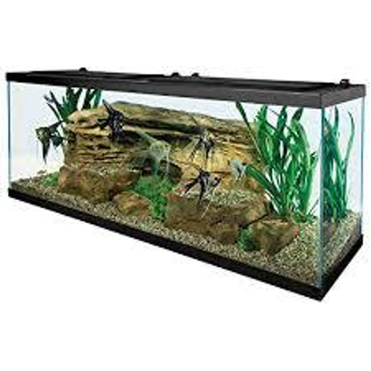 Reservoir - Fish Tank Sizing