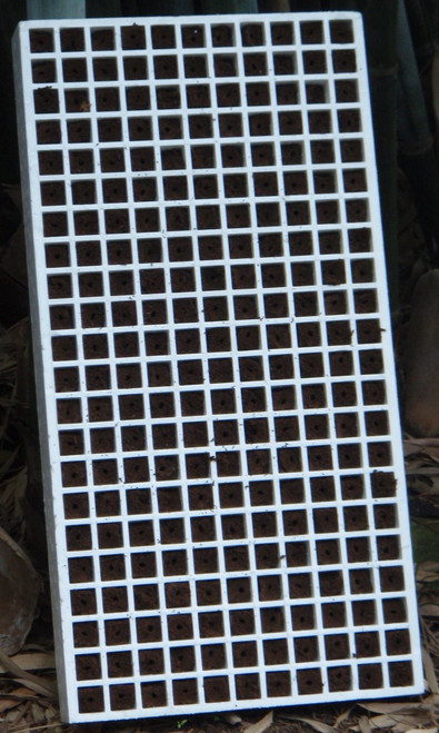 Aquaponics Floating Seedling Tray - (for Beaver Rafts or Media)