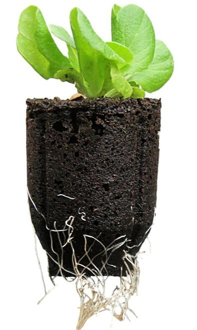 "Seedling Starter Plug for 2"" Net Pots"