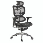 Ergo1 Most Ergonomic Office Chairs - Executive Mesh Back Chairs