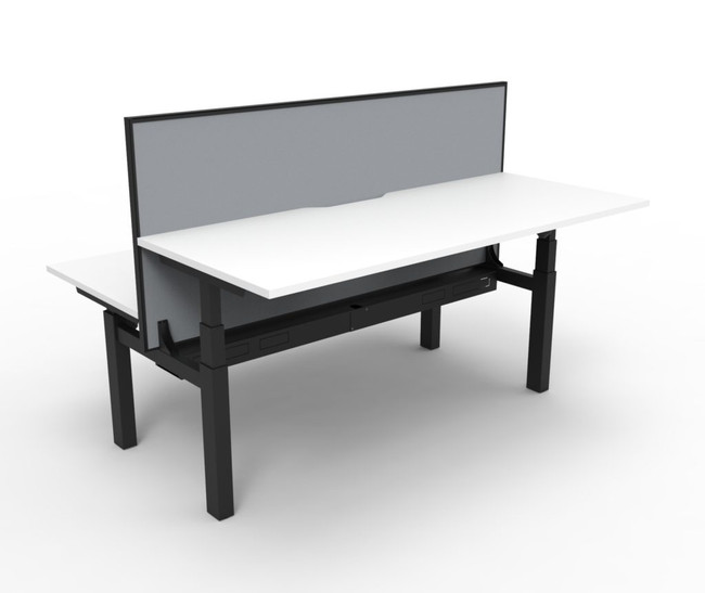 Supreme 2 Person Electric Stand Up Office Workstation Desk With Screen