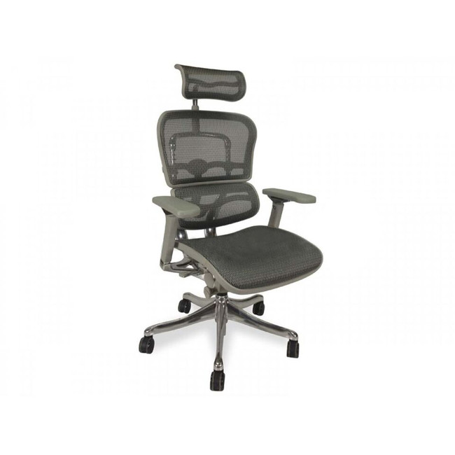 Ergohuman V2 Deluxe High Back Executive Ergonomic Office Chair - Grey