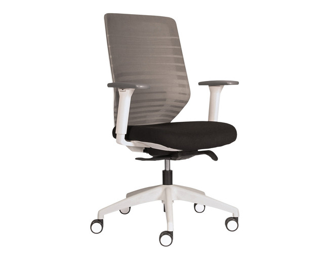 Easton Ergonomic Office Chair