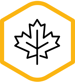 icon-canadian.png