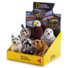 National Geographic North America Babies 6 pc. Asst.