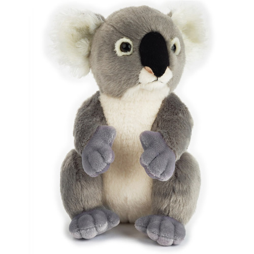 "National Geographic Koala 9"" (Basic Collection)"
