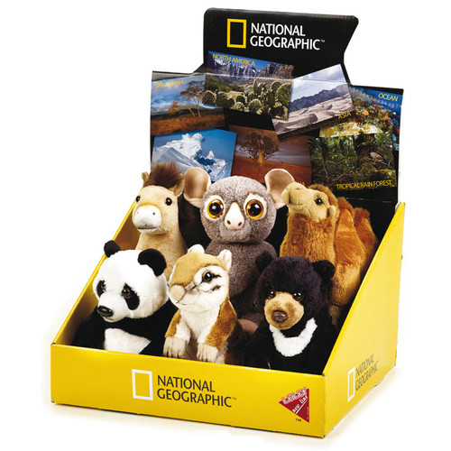 National Geographic Asia Babies 6 pc. Asst.