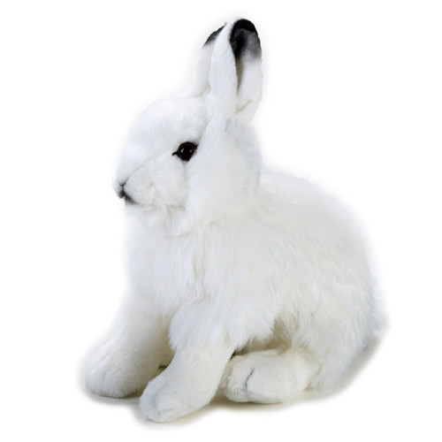 National Geographic Arctic Hare 10""