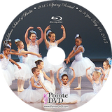2015 Recital and Little Mermaid: Lilburn Recital Sunday 5/17/2015 6:30 pm Blu-ray