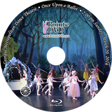 Georgia Metropolitan Dance Theatre Once Upon a Ballet 2016: Sunday 3/20/2016 2:00 pm Blu-ray