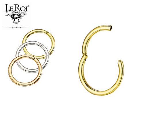 14K R Hinge Ring 16ga 5/16''