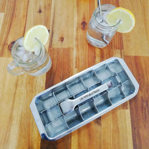 Stainless Steel Ice Cube Tray with lemons