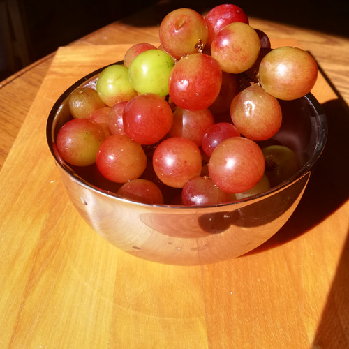 Stainless steel insulated bowl grapes