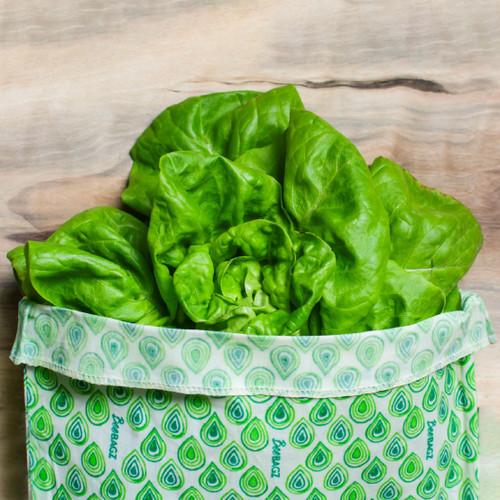 Plastic-Free BeeBagz Starter Pack lettuce