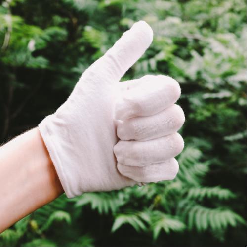 Cotton Gloves - 10 Pairs