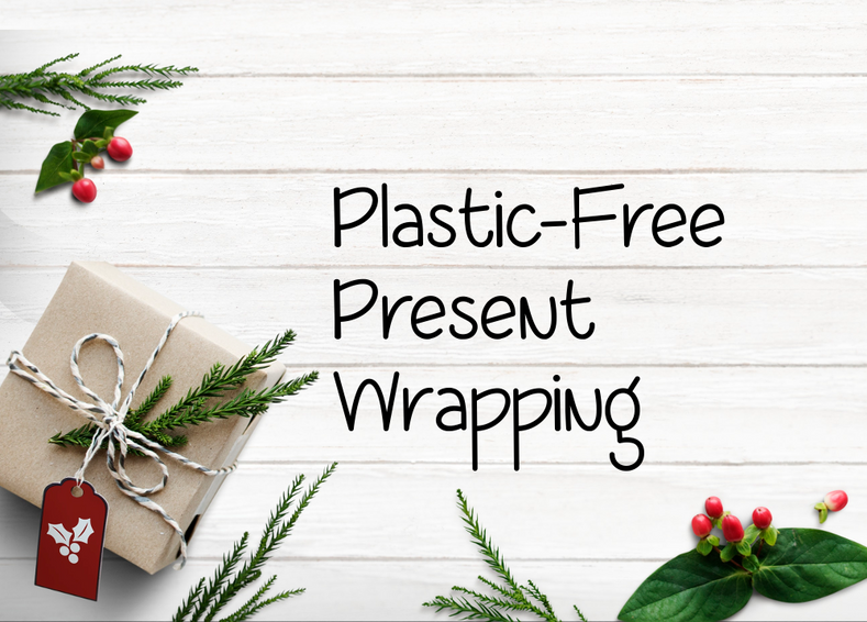 Plastic-Free Present-Wrapping