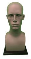 Display Head