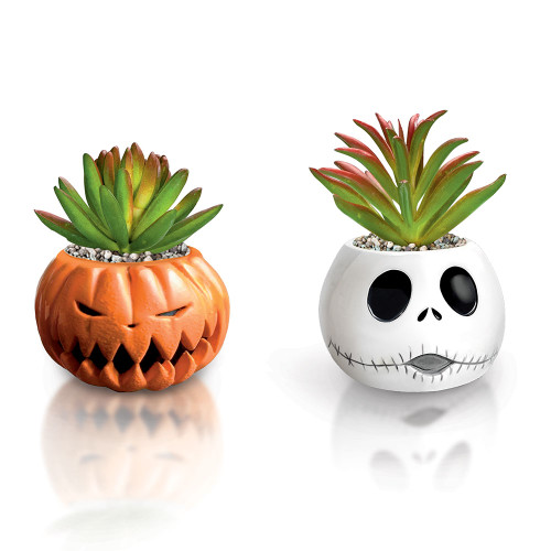 Bradford The Nightmare Before Christmas Succulents Collection Pumpkin King&Jack