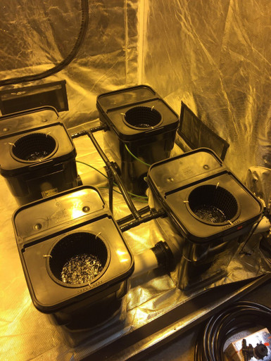 PA Hydroponics 4 Plant Fallponic System custom built for a 4x4 Gorilla grow  tent (NO Clay Rocks) 13 Gallon grow sites with reservoir outside of tent