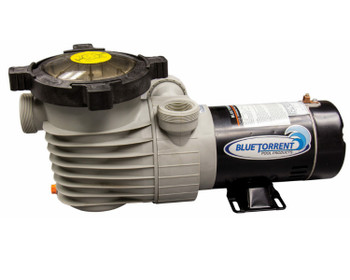 Blue Torrent® 1.5 HP Hurricane Dual Port  Manual Switch Energy Efficient 2 Speed Above Ground Pool Pump