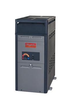 Raypak 106A Gas Heater
