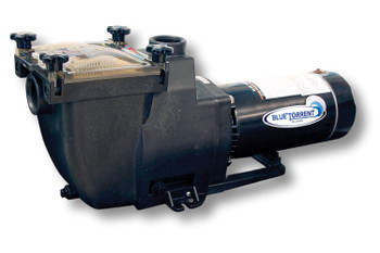 Blue Torrent 1 HP IMP Typhoon 48 Frame In Ground Swimming Pool Pump