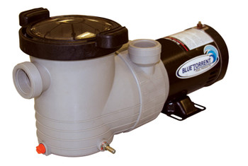 Blue Torrent 1.5 HP Energy Efficient 2 Speed  Above Ground Swimming Pool Pump