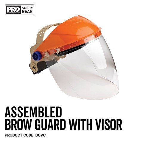Assembled Brow Guard with Visor