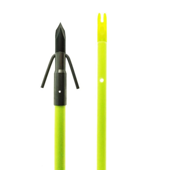 Chartreuse Gar Arrow