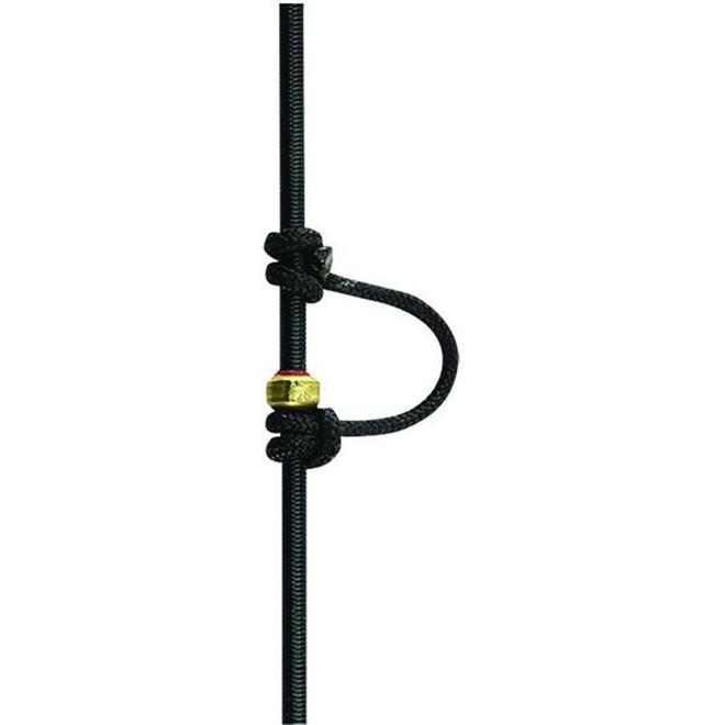 String Loop  (D-Loop)
