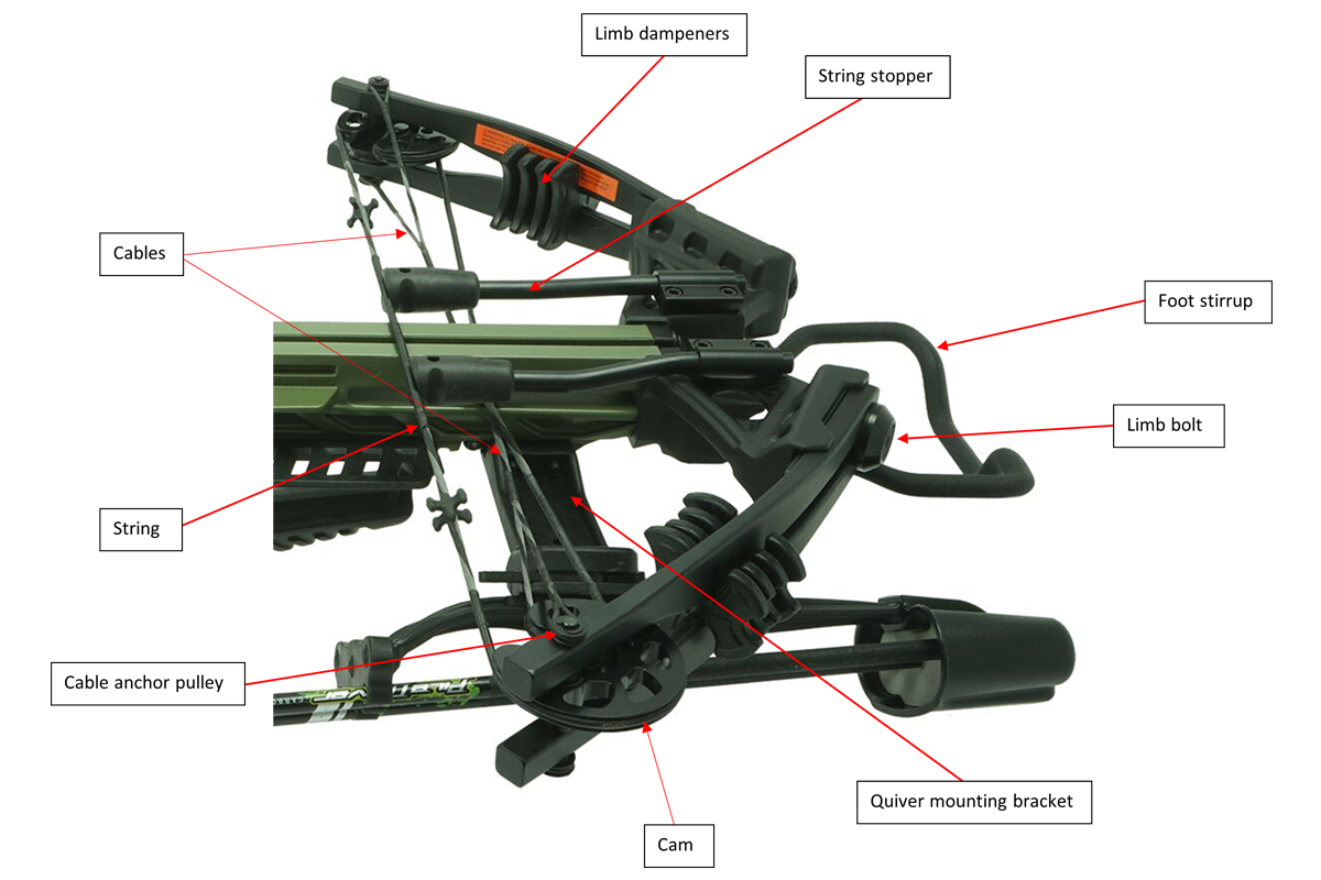 Crossbow Fore End