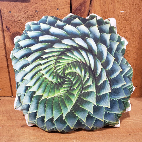 Blue Glow Agave Pillow
