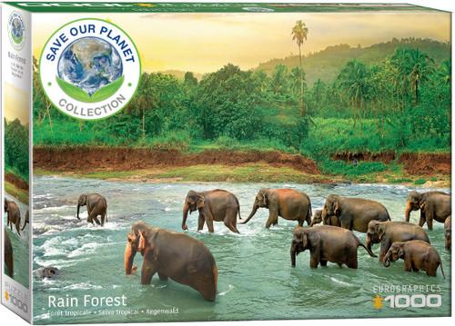 Rainforest 1000pc