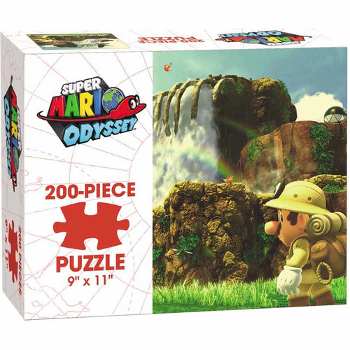 image of one type of puzzle