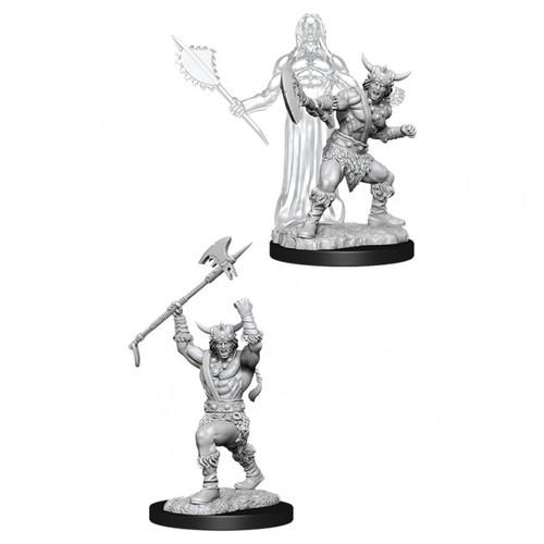 D&D NMU: Male Human Barbarian W11