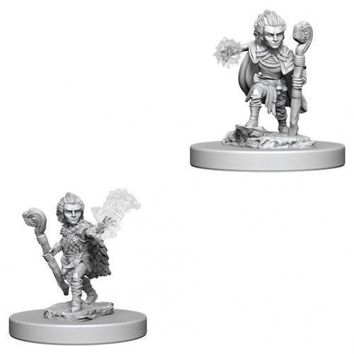 PF DC: Gnome Male Druid