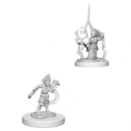 PF DC: Gnome Female Druid