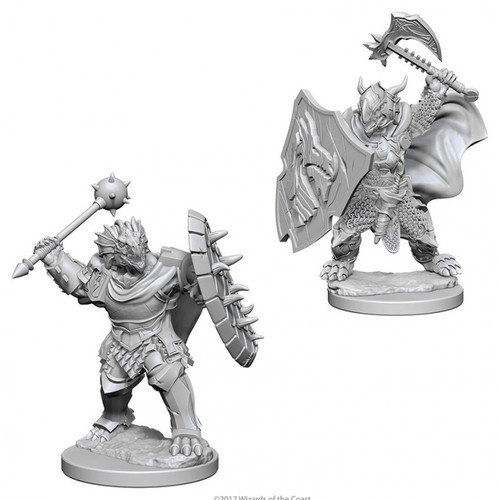 D&D NMU: Dragonborn Male Paladin