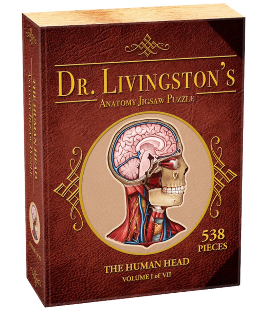 Image of Dr. Livingston's Anatomy Jigsaw Puzzle: Human Head box