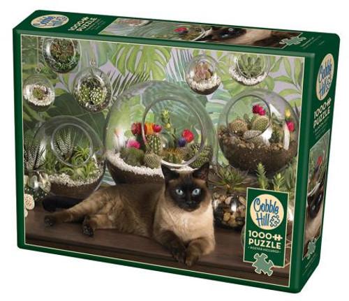 Terrarium Cat 1000pc box